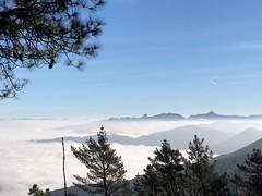 Camino al Pagasarri (eitb.eus) Tags: eitbcom 39205 g1 tiemponaturaleza tiempon2018 invierno bizkaia bilbao carmelmartin