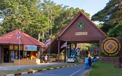53678-Khao-Yai (xiquinhosilva) Tags: 2017 dongphayayen hintung khaoyai mueangnakhonnayokdistrict nationalpark park thailand unescoworldheritage tambonmusi changwatnakhonratchasima th