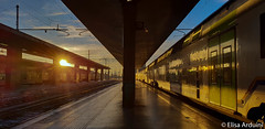 Termini Train Station (ElisaArduini) Tags: train station treno treni stazione sun photography fotografia fotografie