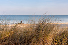 Timmendorfer Strand (snoopsmaus) Tags: deutschland strand strandpromenade timmendorferstrand