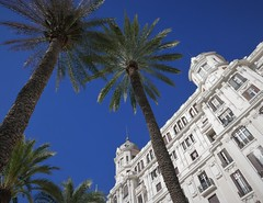 Alicante Waterfront (roomman) Tags: 2018 alicante city downtown town spain shop shops house houses out street facade palm palmtree trees palmtrees tree nature high hotel white contrast sky blue