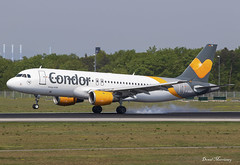 Condor A320-200 D-AICE (birrlad) Tags: frankfurt fra international airport germany aircraft aviation airplane airplanes airline airliner airlines airways arrival arriving landing landed runway airbus a320 a320200 a320212 daice condor