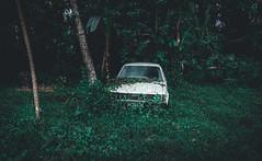 long-term parking (Artur Wala) Tags: lost bali old car toyota explore travel travelphotography photography green nature jungle amateurphotography a6000 alpha6000 sonyalpha6000 trash parking