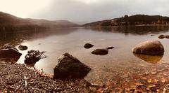 Herbstzeit (Niwi1) Tags: germany blätter laub leaves autumnsaison blackforest autumn water lake trip travel reise herbst wasser see outdoor