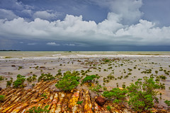 Darwin wet season (NettyA) Tags: 2016 australia darwin nt nightcliff northernterritory sonya7r clouds coastal incomingtide landscape mangroves rockplatform rocks sea seascape storm water wetseason