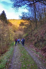 (JoCo...) Tags: nature blue sky green tree trees hiking hikinginluxembourg apple iphone iphone7plus klangwee oesling luxembourg letzebuerg stairs music musek klang panorama éislek visitéislek hoscheid bnw noiretblanc bw color colors zesummen ont joco joscorreia correia diekirch promenade promenadeàpied ensemble training molberleeën landscape speedo bourscheid iphonography iphonegraphy beautiful exploretocreate liveoutdoors theoutbound mindthemountains explorewildly finditliveit campvibes adventuremobile thedesertisbeautifultoo northwestisbest exploremore bestvacations natgeo travelstoke wonderfulplaces wwwjoscorreialucopyrightjos flickr instaflickr photosflickr foto