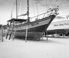 Oelin (russty1964) Tags: speedgraphic largeformat filmphotography 4x5 bnw