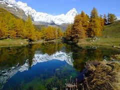 Le mete più belle di Aosta e della sua Valle (Cudriec) Tags: aosta cascatedilillaz castellodifenis castellodiverres chamonix courmajyeur funiviadeighiacciai issogne meteaosta montebianco parconazionaledelgranparadiso saintvincent valledaosta