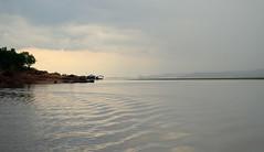 Peaceful Rio Negro (peter_a_hopwood) Tags: rio negro amazon brazil amazonas water river november 2018 sony a99