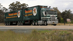 Hume Cabovers (1/3) (Jungle Jack Movements (ferroequinologist)) Tags: kenworth freightliner argosy kw kenny bowning yass nsw new south wales australia hume highway hp horsepower big rig haul haulage freight cabover trucker drive carry delivery bulk lorry hgv wagon road nose semi trailer deliver cargo interstate articulated vehicle load freighter ship move roll motor engine power teamster truck tractor prime mover diesel injected driver cab cabin loud rumble beast wheel exhaust double b grunt teeman k200 leeton jimboola nightingale freighlines jeftomson apple pear