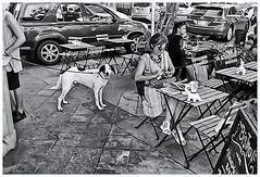 Fotografía Callejera (Street Photography) (Samy Collazo) Tags: pentaxauto1101978 pentax11018mmf28 pentaxmini pentax 110format formato110 smallformat formatopequeño sanjuan oldsanjuan viejosanjuan puertorico bn bw streetphotography fotografiacallejera