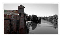 Et au milieu coule une rivière... (Jean-Louis DUMAS) Tags: eau water rivière river bird oiseau chateau castle castel bâtiment blackandwhite blackwhite blackwhitephotos bnw bw noiretblanc noretblanc nb pierres arbre tree