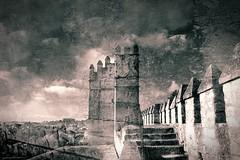 alcazar de los reyes cristianos cordova (hmong135) Tags: cordova castle fort heritage moorish christian spain europe bw