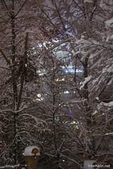 Засніжений зимовий Київ 380 InterNetri.Net Ukraine