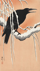 Crow on snowy branch (1900 - 1930) by Ohara Koson (1877-1945). Original from The Rijksmuseum. Digitally enhanced by rawpixel. (Free Public Domain Illustrations by rawpixel) Tags: pdproject21batch2x otherkeywords tagcc0 animal antique art asian bird branch crow drawing illustration japan japanese koson museum ohara oharakoson old paint rijksmuseum snow vintage