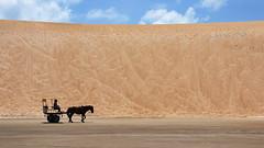 (Kaká) Tags: brasil brazil beach dune