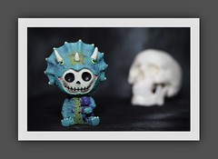 Furry Bones Triceratops (N.the.Kudzu) Tags: tabletop furrybones resin figurine triceratops skull canondslr canoneflens canon430ex flash photoscape frame home