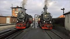 HSB Harzer Schmalspur Bahn (BaerTi's Bilder) Tags: dampflokomotive eisenbahn railroad germany harz beutschland microsoft lumia 950xl 2017