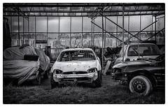 Car cemetery (jefvandenhoute) Tags: belgium belgië rumst car cemetery light monochrome