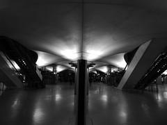metro.14 (supermimil) Tags: supermimil panoramicks europe france eiffel sacré coeur louves notre dame paris 2018 m14 biibliothequenationalefrançoism metro underground monochrome symetric voute