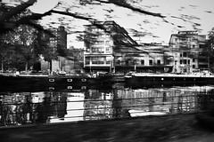 Die Maas (kislat.karin) Tags: fluss häuser schiffe kähne baum grobkörnung bläckandwhite