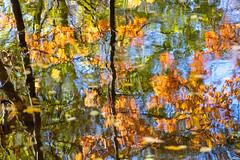 Herbst an der Alb - 4 (Heiko S.) Tags: karlsruhe badenwürttemberg deutschland de herbst alb albtal canon