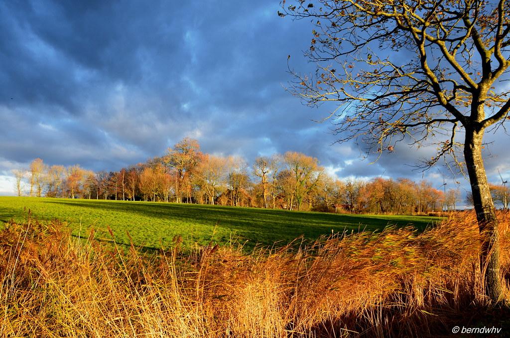 947b4363ae622 Friesische Landschaft bei Hooksiel-Tünnens   Landkreis Friesland (berndwhv)  Tags  deutschland norddeutschland