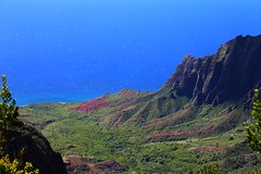The Kalalau Valley (Ken S Three) Tags: kalalau kauai hawaii nature landscape ocean pacificocean breathtakinglandscapes