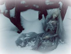 frozen (dolls of milena) Tags: bjd abjd resin doll metis codie portrait snow outdoor winter
