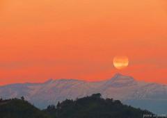 LA LUNA PRIMA DI TRAMONTARE (piera.seghetti) Tags: tamonto luna sibilla fotografa piera seghetti