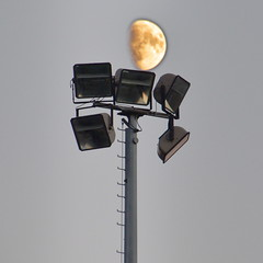 The truth about 1969 unveiled at last (Jean-Luc Léopoldi) Tags: moon lamppost lampadaires projecteurs lune échelle ladder humour