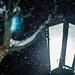 13 декабря 2018, День памяти апостола Андрея Первозванного. Лития по митр. Николаю (Ярушевичу) / 13 December 2018, Rememrance day of the Apostle Andrew the First-Called. Commemoration of Metropolitan Nicholas (Yarushevich)