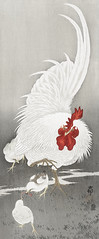 Rooster and three chicks (1900 - 1910) by Ohara Koson (1877-1945). Original from The Rijksmuseum. Digitally enhanced by rawpixel. (Free Public Domain Illustrations by rawpixel) Tags: pdproject21batch2x otherkeywords tagcc0 animal antique art asian bird chicks drawing illustration japan japanese koson museum ohara oharakoson old paint rijksmuseum rooster vintage