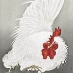 Rooster and three chicks (1900 - 1910) by Ohara Koson (1877-1945). Original from The Rijksmuseum. Digitally enhanced by rawpixel. thumbnail