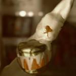 Der Hase mit der Trommel wünscht frohe Weihnachten thumbnail