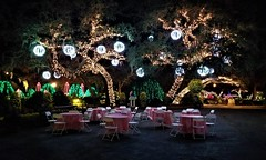Bellingrath Magic Christmas in Lights (ciscoaguilar) Tags: alabama theodore bellingrath lights christmas