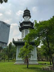 люмпини-парк-lumpini-park-bangkok-9084