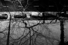 ©Aleksander Kalka (Aleksander Kalka Photographiti) Tags: shadows ombre cienie ulica strada strasse snieg neve snow schnee trees alberi drzewa cars macchine macchina car samochod auto light night noc swiatlo luce nikon d3s nikkor 50mm f18 f18g g