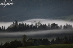 Morningfog (chk.photo) Tags: outdoor salzburg baum berg landscape nature austria light clouds ngc natur mountain naturemasterclass naturewatcher