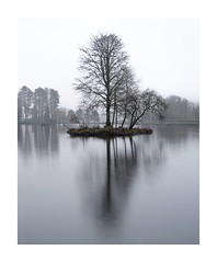 Steely Reflection (Andrew Hocking Photography) Tags: landscapephotography merthyr wales cyfarthfa park castle lake water pool mist fog southwales morning winter grey steelblue tree deciduous bare cold longexposure simple minimal explore inexplore explored
