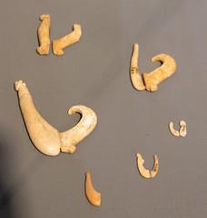 IMG_0067 (jaglazier) Tags: 121618 15thcentury18thcentury 15thcenturyad18thcenturyad 2018 bone bonecarving chile crafts december easterisland fathersebastianenglertanthropologicalmuseum fishing polynesian rapanui archaeology art copyright2018jamesaglazier fishhooks museums tools