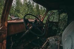 Truck (rantropolis) Tags: abandoned car truck nikon d750 15mm cargraveyard urbex urbanexploration