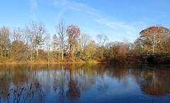 DSC05360b (Naturecamhd) Tags: dschx90v hx90v newyorkbotanicalgarden nybg botanicalgarden nature bronx green eco sonyhx90v thebronx sonydschx90v fall fallfoliage autumn fallcolors autumnleaves twinlakes reflection frozen lake