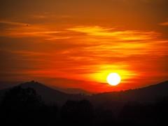 Mordor? (jocsdellum) Tags: mordor capvespre atardecer sunset otoño tardor autumn fall sol sun rojo vermell redsunset contrallum contraluz backlighting