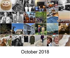 October 2018 mosaic (Danube66) Tags: october2018 mosaic