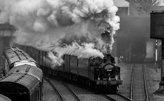 Jinty takes the mail train (Peter Leigh50) Tags: steam mono monochrome blackandwhite train locomotive great gcr gala central railway railroad rail fujifilm fuji xt2