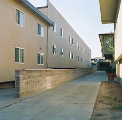 Bascom // San Jose (bior) Tags: hasselblad500cm portra160nc expiredfilm mediumformat 120 6x6cm hasselblad apartment driveway wall sanjose bascom