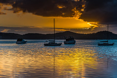 Gold on the Bay (Merrillie) Tags: daybreak sunrise nature australia drizzly tascott overcast boats nsw newsouthwales wet koolewong morning brisbanewater dawn cloudy water landscape earlymorning coastal clouds sky waterscape bay centralcoast outdoors foreshore