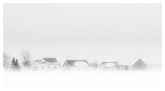 DSC_0024-Mr (gillesporlier) Tags: winter hiver snow neige nikon horizon brume mist blackandwhite bnw noiretblanc paysage landscape ferme farm monochrome house maison maisons arbre tree