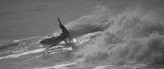 IMG_1467 (leonmoreyclub) Tags: aquitaine atlantique barel beachbreak bydtn capreton compétition femme france homme hossegor landes nature océan photo plage profrance quiksilver roxy sea seignosse soleil surf tube wave vagues